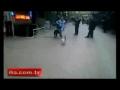 Gato ataca Rottweiler